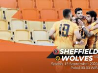 Tips Sheffield vs Wolves